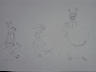 Cedric the kangaroo