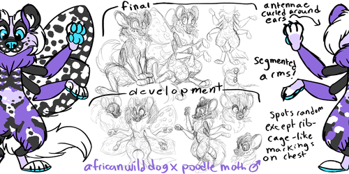 aoratostheos moth dog character design commission