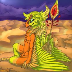 Golden Nev on the Golden Sands