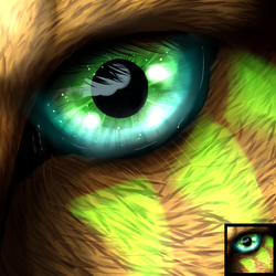 Eye-Con -Commission