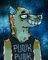 [req]punk punk