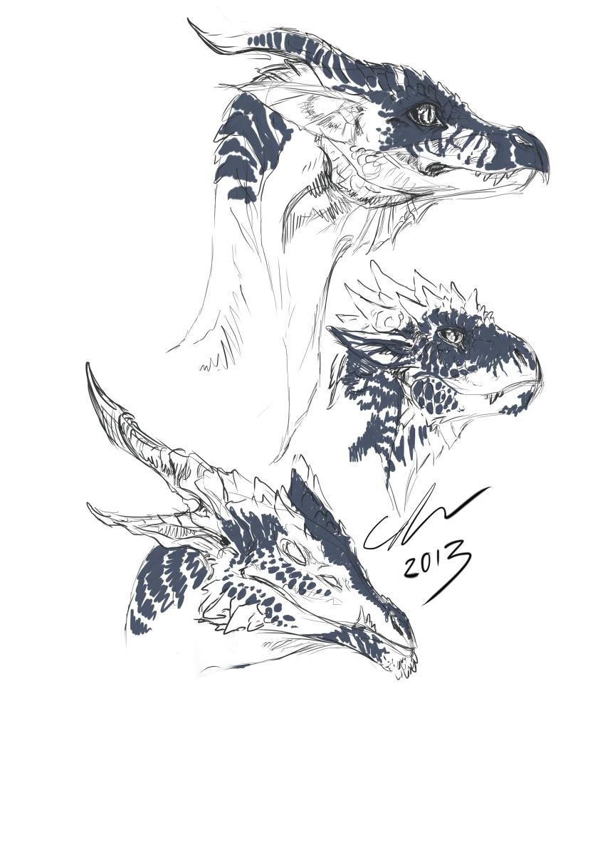dragons profiles sketch