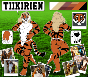 Reference sheet Tiikirien
