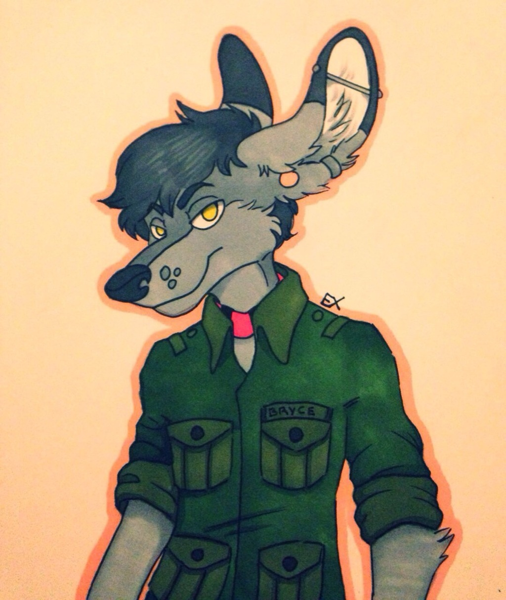 What Do They Say About Roos in Uniform?