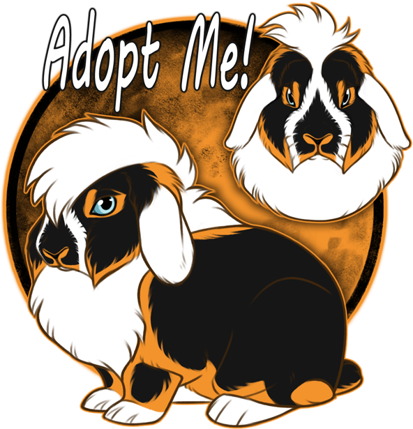Lion Lop Adopt [$40 / OPEN ]