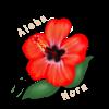 Avatar for AlohaNora