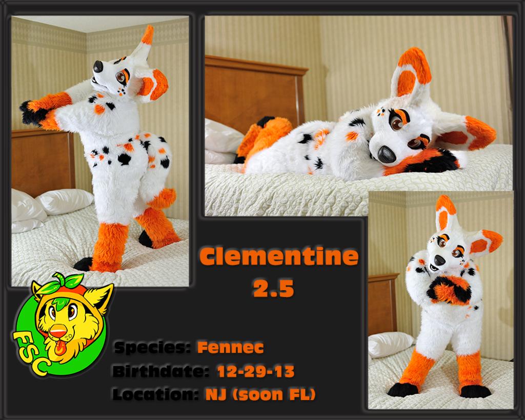 Clementine 2.5