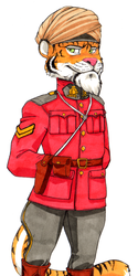 Daily Newf 361 - Tiger RCMP