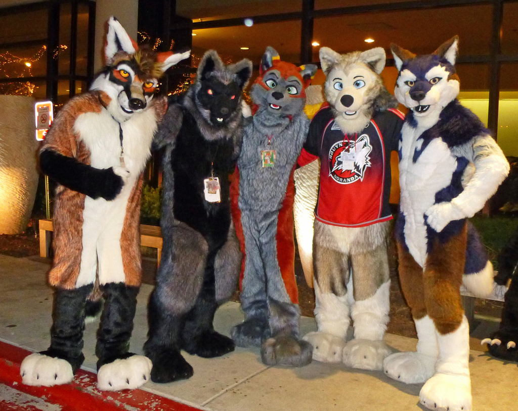 Dog-like creatures at MWFF!
