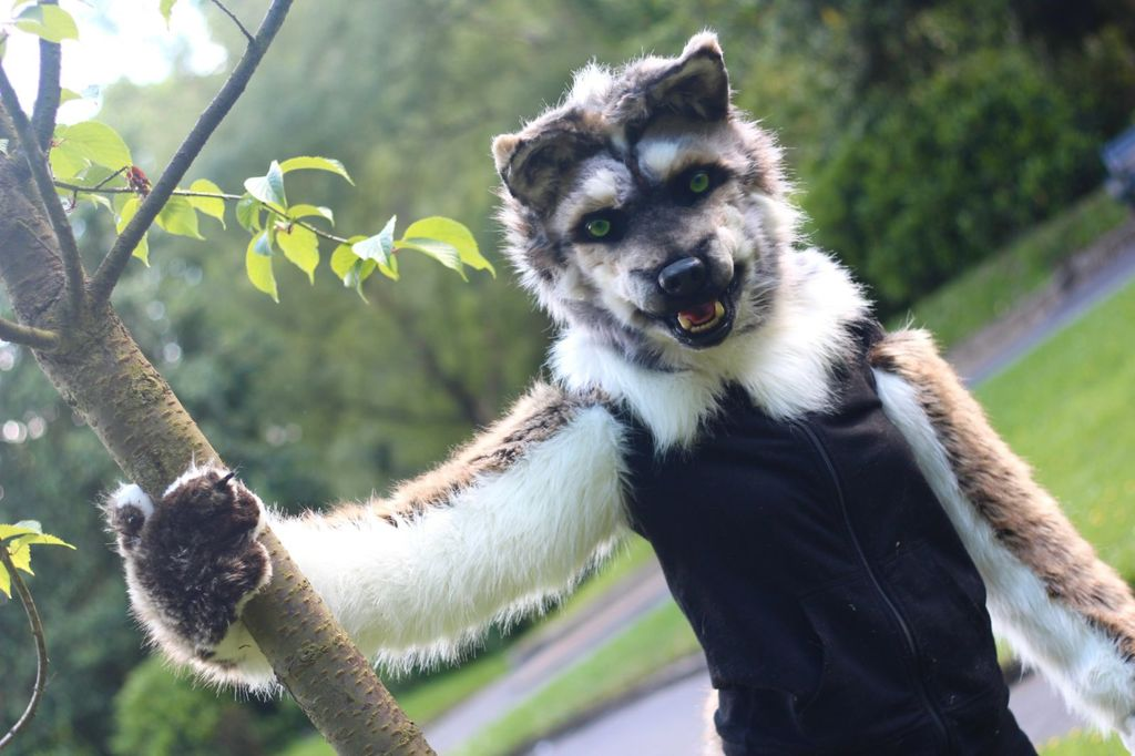 FOR SALE Realistic wolf mask partial