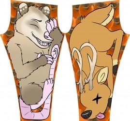 How Possum Got His Smile Leggings!