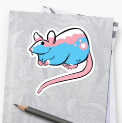 Laying Down Trans Pride Rat Sticker