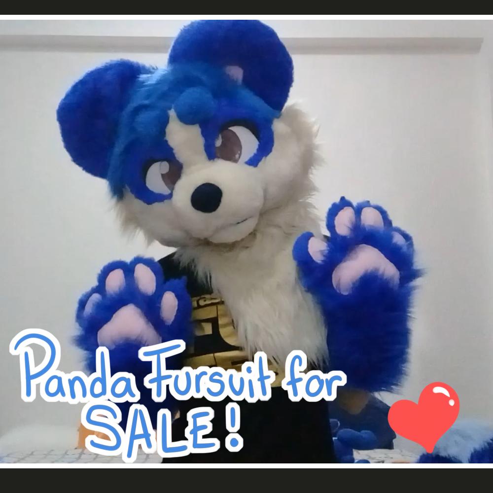 Blue Panda for sale!
