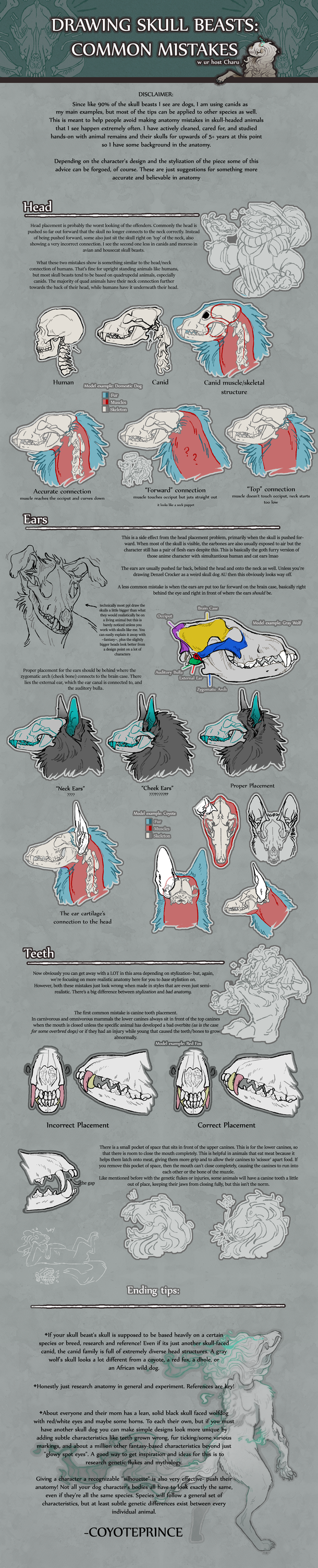 Drawing Skull Beasts: Common Mistakes