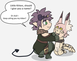 kitten needs a name