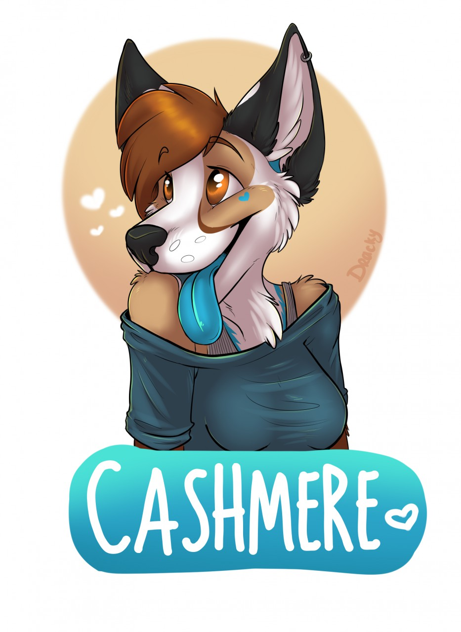 Most recent image: Cashmere badge