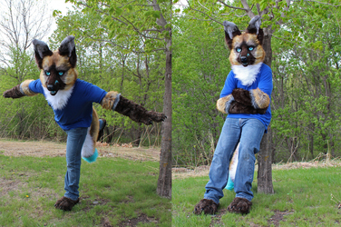 Flyinfox Partial