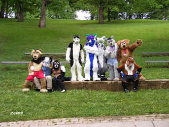 The StormConII Fursuit Gang