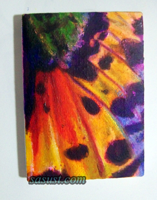 Sunset Moth ACEO