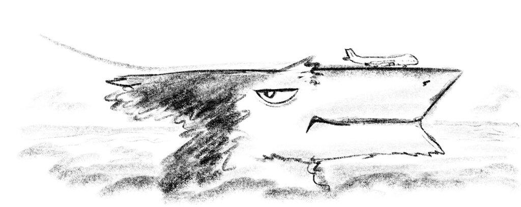 Bronzewing Landing