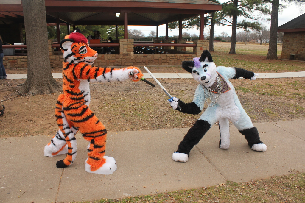 Arlington, Texas furmeet - February 2016
