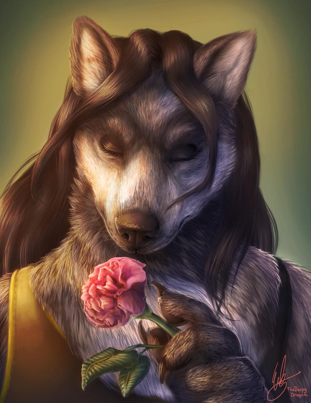 Rose - 2016