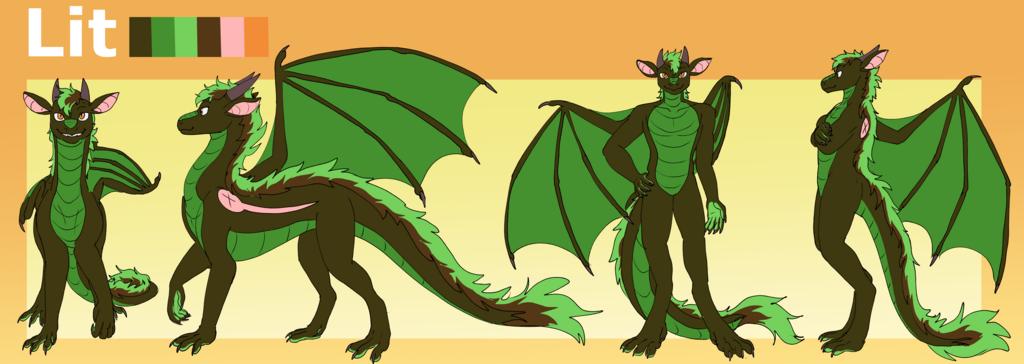 Lit the Dragon Ref v2