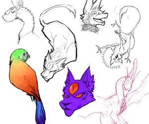 doodlins