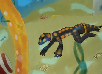 Salamander Explorer