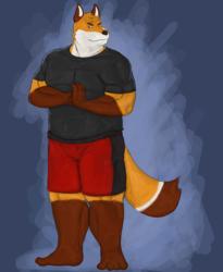 Foxer