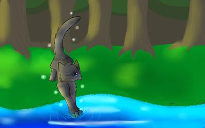 +LATE+:R: Splashtail be splashing