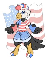 USA Eagle (Custom)