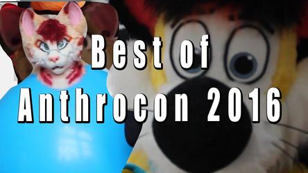 Best of Anthrocon 2016