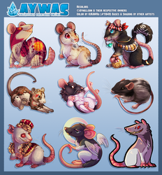 Aywas: Rat Colorations