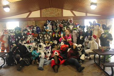 Arlington, Texas furmeet - December 2015