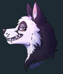 Fox Teeth [Art  Fight]