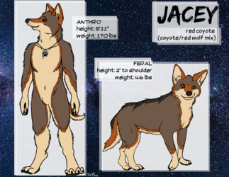 Commission: ref sheet for Jacey