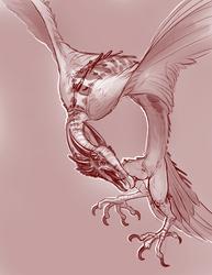 Vulture/Wyrm Hybrid