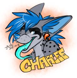 Charlee - Sketch badge