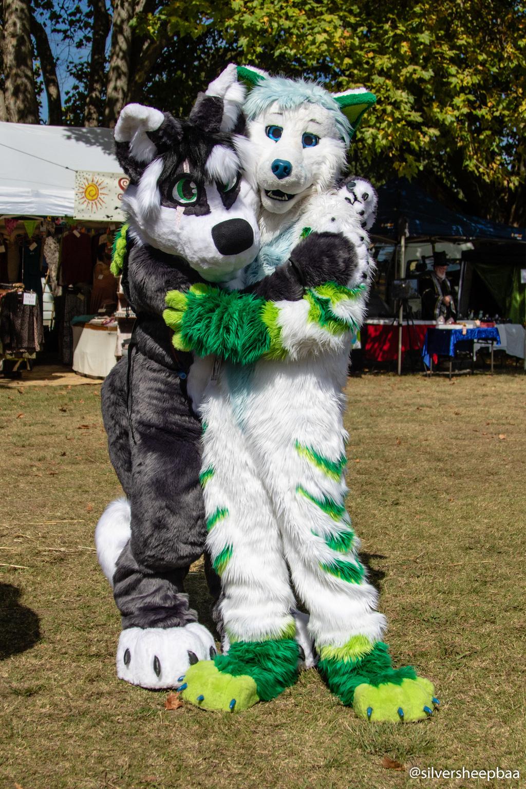 Ironfest 2018: Fox Hugs