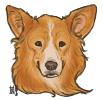 [2013] Ginger avatar
