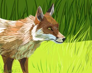 Study: Google Fox