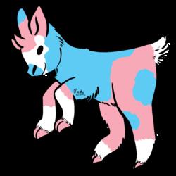 Trans Pride Goat Kid