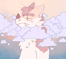 get your head outta the clouds