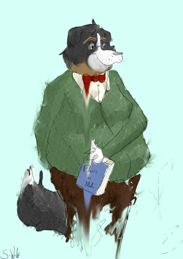 Most recent image: Bernese Mountain Dad