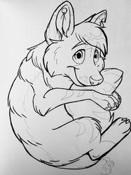 Cute Bing the Wolf by WeMightBite
