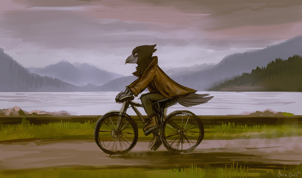Most recent image: Cycling by the lake