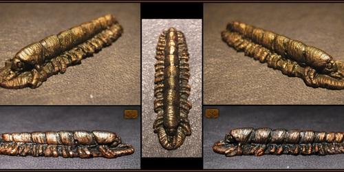 Cast Resin Copper Millipede