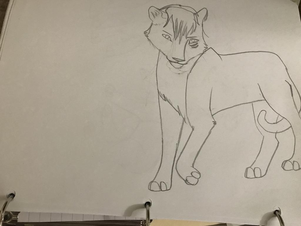 Yuma lion OC