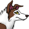 Avatar for Bad-Collie